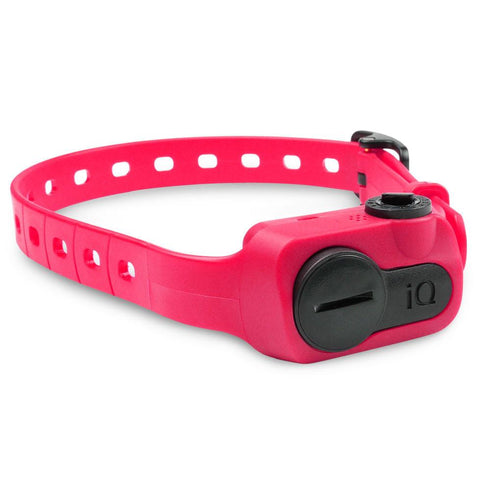 Dogtra IQ-BARK-PNK iQ No Bark Collar Pink - WarehouseSpot