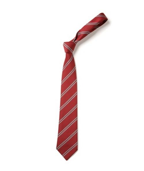 St Anne Line Catholic Juniors School - School Tie | School Uniform Centres