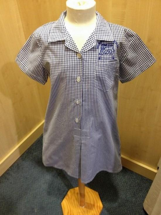 Bournes Green School - Blue/White Striped Summer Dress with School Logo - Schoolwear Centres