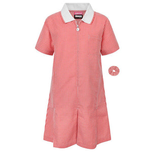 Red A-Line Gingham Dress