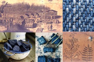 Indigo and the Lowcountry: From plants to your pants