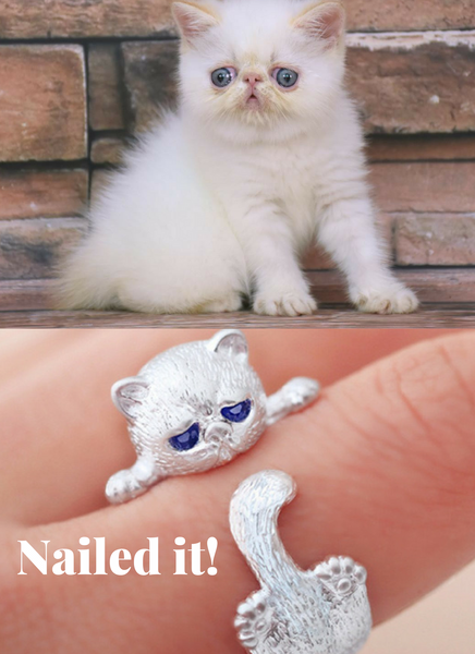 Exotic Shorthair Cat Ring
