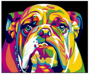 "Rainbow Bull Dog Painting By Numbers (16""x20"" / 40x50cm)"