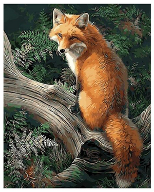 "Fox DIY Painting By Numbers (16""x20"" / 40x50cm)"