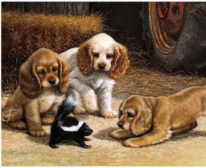 "Puppies and Skunk DIY Painting By Numbers (16""x20"" / 40x50cm)"