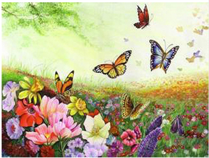 "Butterflies DIY Painting By Numbers (16""x20"" / 40x50cm)"