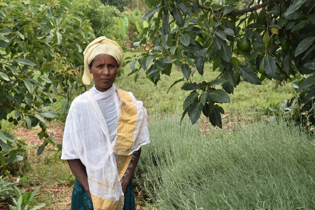 Meet Belaynesh: Our Ethiopian herbal tea maker