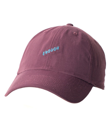 Evolution Dad Hat