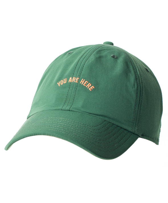 Evolution Dad Hat - Final Sale