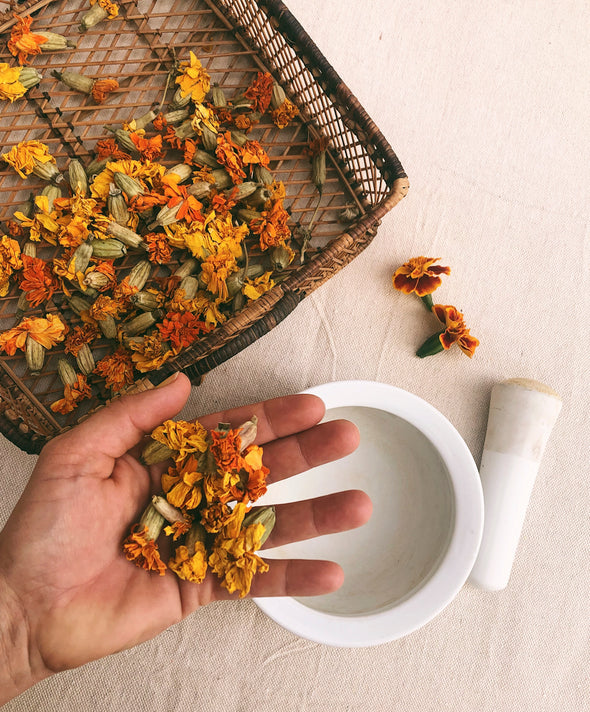 The Dogwood Dyer Marigold Flowers Natural Dye Kit