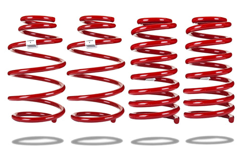 Sports Ryder Lowering Spring Kit - Chevrolet Camaro 2010-2015