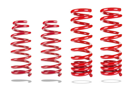 Sports Ryder Lowering Spring Kit - Chrysler LX 2005-2012