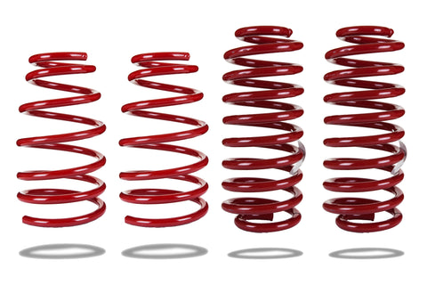 Sports Ryder Lowering Spring Kit - Ford Mustang 2005-2014 - LOW