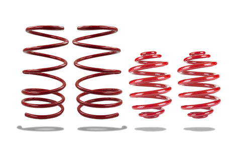 Sports Ryder Lowering Spring Kit - Pontiac GTO 2004-2006 - X-Low
