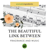 The Beautiful Link between Fragrance and Music - Aromatic Ingredients