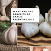 What are the benefits of Garlic essential oil? - Aromatic Ingredients