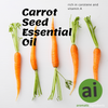 The benefits of Carrot Seed Essential Oil  - Aromatic Ingredients