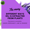 The many different ways oil is extracted from plants