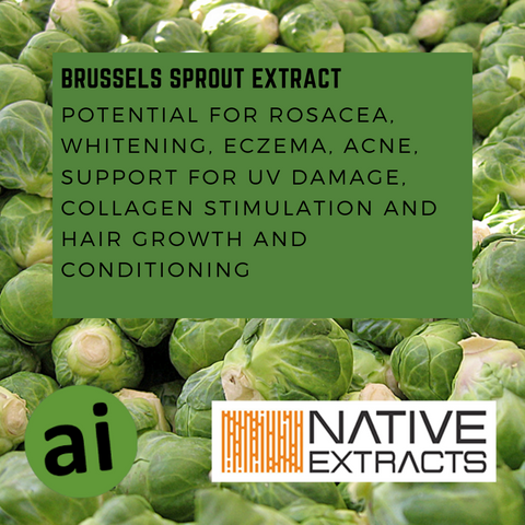 BRUSSELS SPROUT EXTRACT - Aromatic Ingredients
