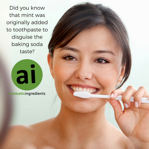 Did you know that mint was originally added to toothpaste to disguise the baking soda taste? Aromatic Ingredients
