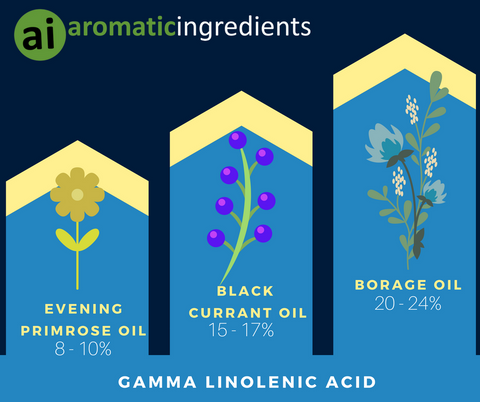 Take a look at our list of the 3 powerful GLA ingredients to include in your skincare formulations.