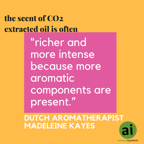 "Dutch aromatherapist Madeleine Kayes sums it up nicely by explaining that the scent of CO2 extracted oil is often ""richer and more intense because more aromatic components are present."""