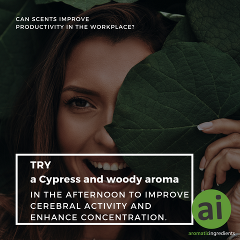 Cypress and woods are the aroma of choice in this Tokyo workplace throughout the afternoon to improve cerebral activity and enhance concentration.