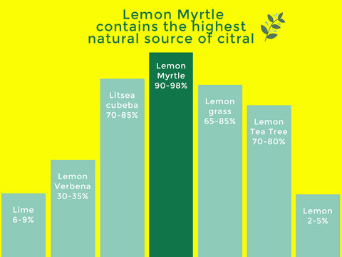 Lemon Myrtle contains the highest natural source of citral