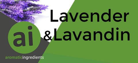 Market report Lavender and Lavandin essential oils - Aromatic Ingredients