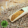 Cumin Oleoresin 14-17% - Aromatic Ingredients