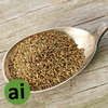 Celery Seed Oleoresin 12% - Aromatic Ingredients