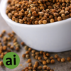 Coriander Seed Essential Oil - Aromatic Ingredients