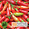 Chilli Capsicum Extract - Aromatic Ingredients