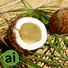 Coconut type Flavour Natural - Aromatic Ingredients