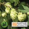 Hops Flower Extract - Aromatic Ingredients