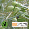 Olive Leaf Extract - Aromatic Ingredients