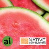 Watermelon Fruit Extract - Aromatic Ingredients