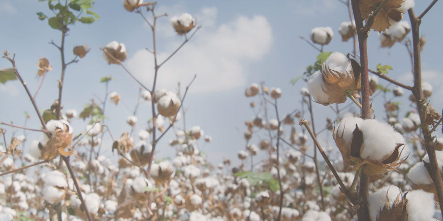 Organic Cotton Clothing | Sustainable fashion made with natural organic pima cotton
