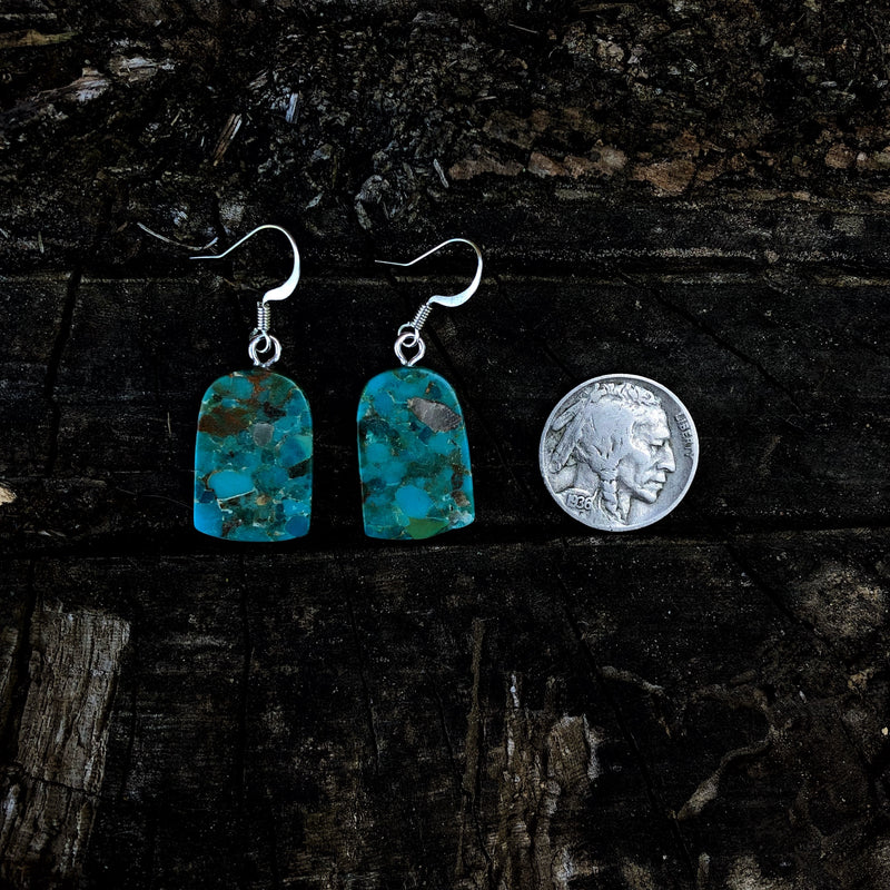 American Turquoise & Spiny Oyster Slab Earrings