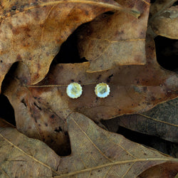 Dainty Golden Rutilated Quartz Studs