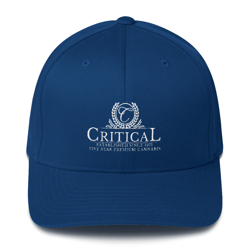 Critical...Structured Twill Cap