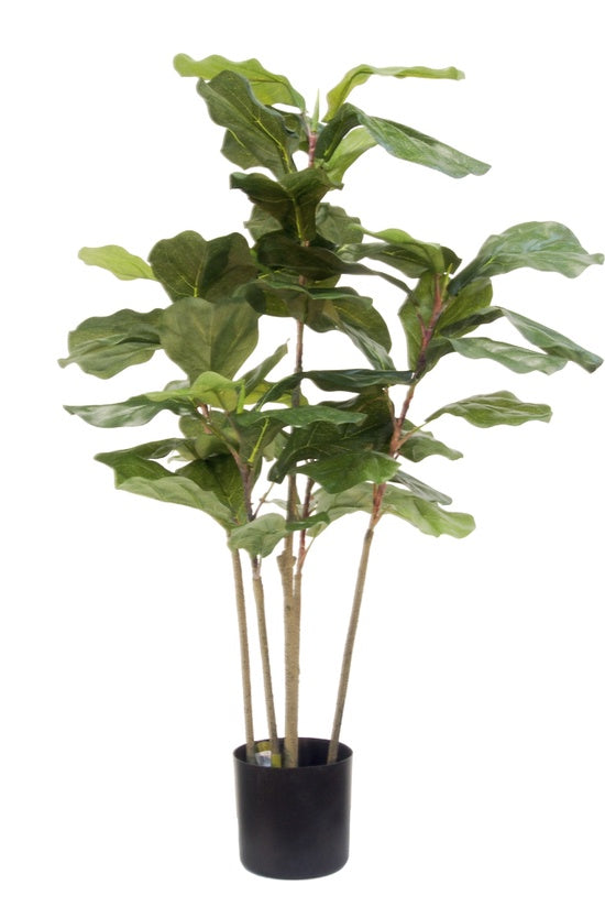 Faux Plant - Potted Fiddle Tree 90cm