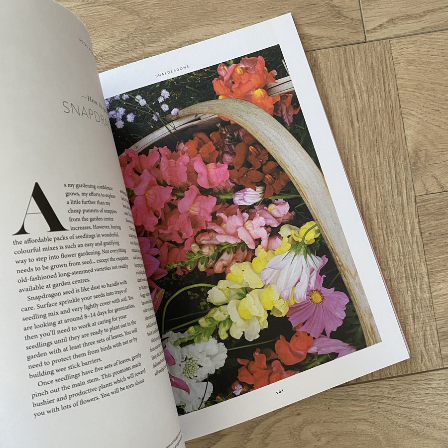 Petal Power by Julia Atkinson-Dunn | Shelf Home and Gifts