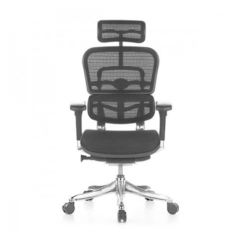 Ergohuman V2 Elite Office Chair