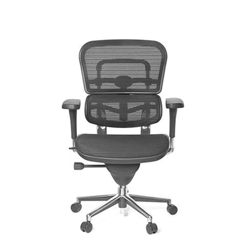 Ergohuman Classic V1 Mesh Office Chair