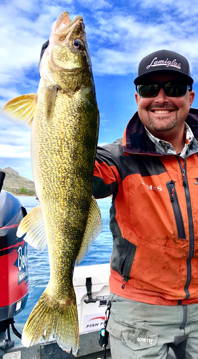 LA70MHS | Assassin 7' 8-15lb 1/4-1oz Spin (Walleye Jig, Plug & Blade Bait)