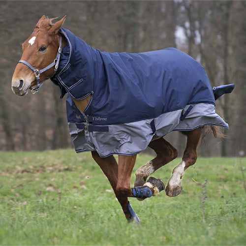 Equi-Theme Tyrex 600D Indestructible - 1 year warranty - Combo Turnout Rug -200g