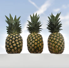 2 PACK Stainless Steel Pineapple Corer Slicer
