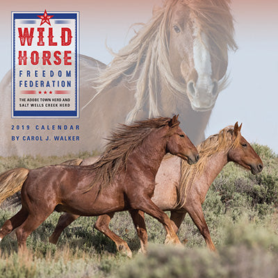 Support the Wild Horse Freedom Federation Calendar 2019
