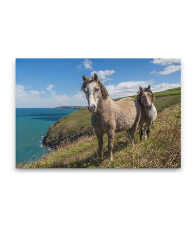 A Costal Tale canvas print